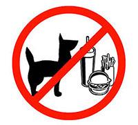 Giftige etenswaren voor je hond