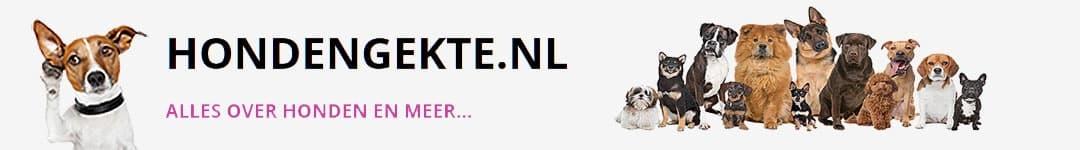 Hondengekte.nl